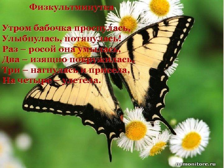 Физкультминутка Утром бабочка проснулась, Улыбнулась, потянулась! Раз – росой она умылась, Два – изящно