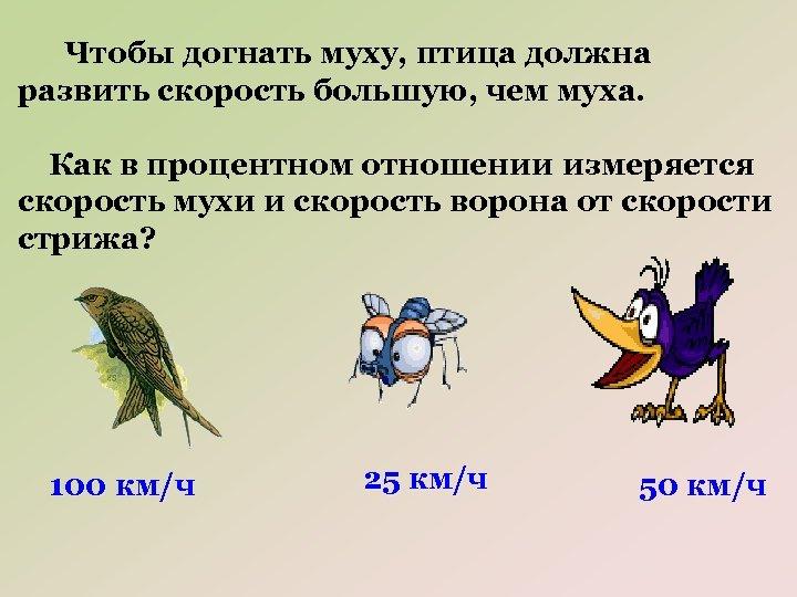 Чтобы догнать муху, птица должна развить скорость большую, чем муха. Как в процентном отношении