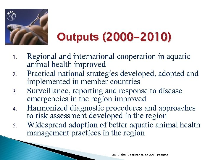 Outputs (2000 -2010) 1. 2. 3. 4. 5. Regional and international cooperation in aquatic