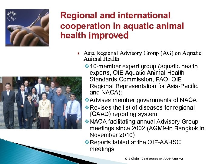 Regional and international cooperation in aquatic animal health improved Asia Regional Advisory Group (AG)