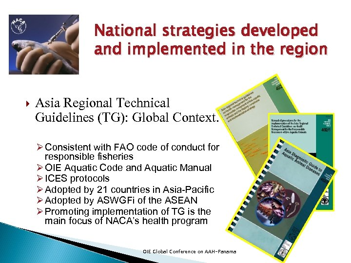 National strategies developed and implemented in the region Asia Regional Technical Guidelines (TG): Global