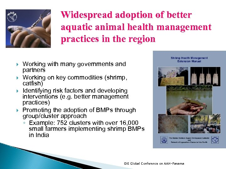 Widespread adoption of better aquatic animal health management practices in the region Working with