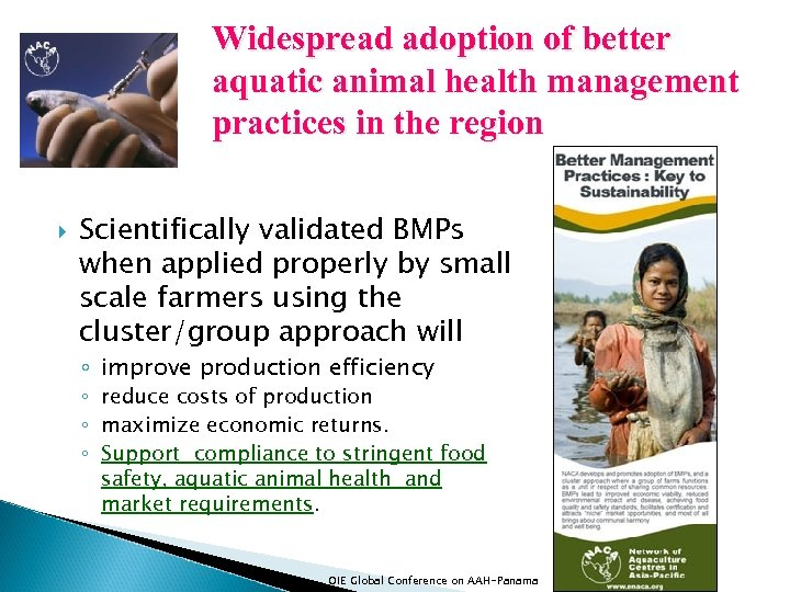 Widespread adoption of better aquatic animal health management practices in the region Scientifically validated