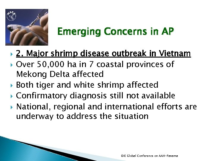 Emerging Concerns in AP 2. Major shrimp disease outbreak in Vietnam Over 50, 000