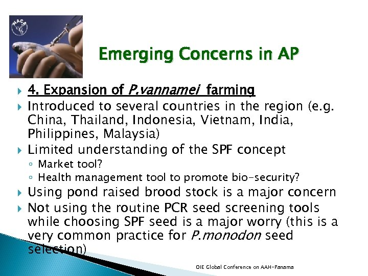 Emerging Concerns in AP 4. Expansion of P. vannamei farming Introduced to several countries