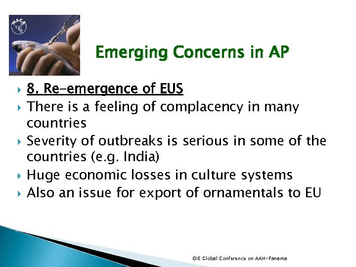 Emerging Concerns in AP 8. Re-emergence of EUS There is a feeling of complacency