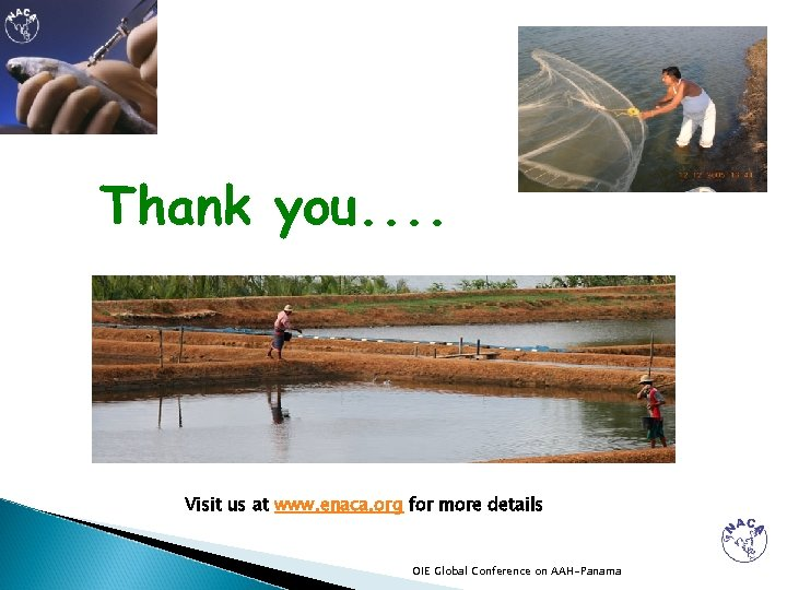 Thank you. . Visit us at www. enaca. org for more details OIE Global