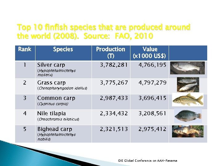 Top 10 finfish species that are produced around the world (2008). Source: FAO, 2010