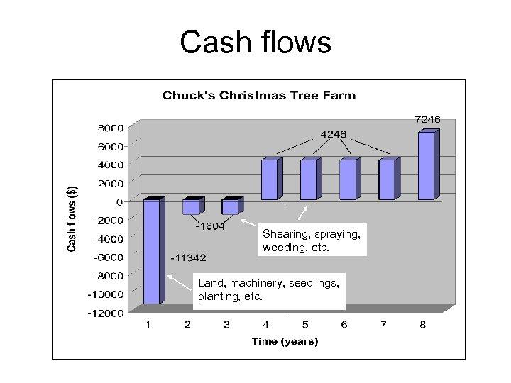 Cash flows Shearing, spraying, weeding, etc. Land, machinery, seedlings, planting, etc.
