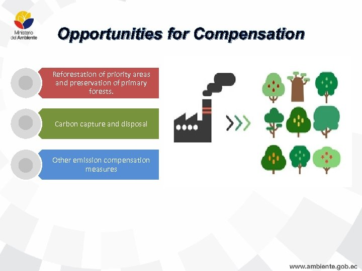 Opportunities for Compensation Reforestation of priority areas and preservation of primary forests. Carbon capture