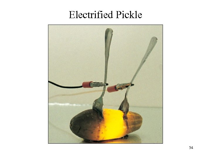 Electrified Pickle 54