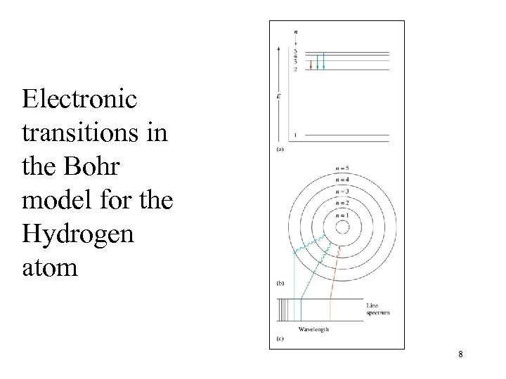 Electronic transitions in the Bohr model for the Hydrogen atom 8