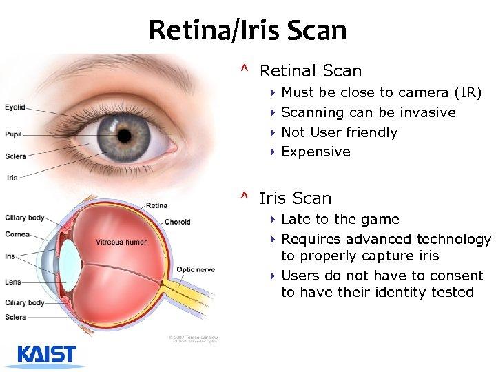 Retina/Iris Scan ^ Retinal Scan 4 Must be close to camera (IR) 4 Scanning