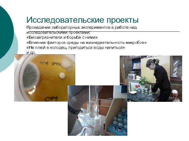 Исследовательские проекты Проведение лабораторных экспериментов в работе над исследовательскими проектами: «Биозагрязнители и борьба с