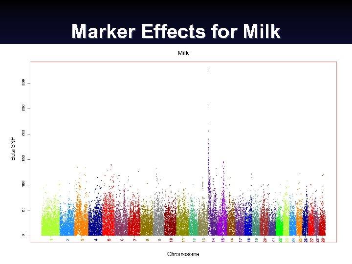 Marker Effects for Milk National Swine Improvement Federation Symposium, Dec. 2008 (30) Paul Van.