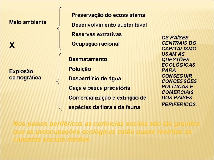 Preservação do ecossistema Meio ambiente Desenvolvimento sustentável Reservas extrativas X Ocupação racional Desmatamento Explosão
