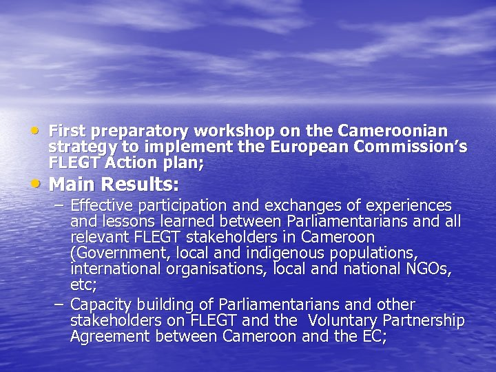 • First preparatory workshop on the Cameroonian strategy to implement the European Commission's