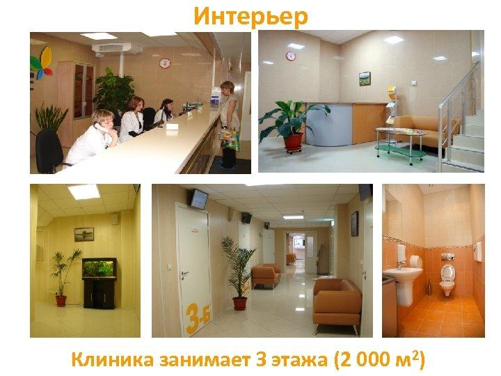 Интерьер Клиника занимает З этажа (2 000 м 2)