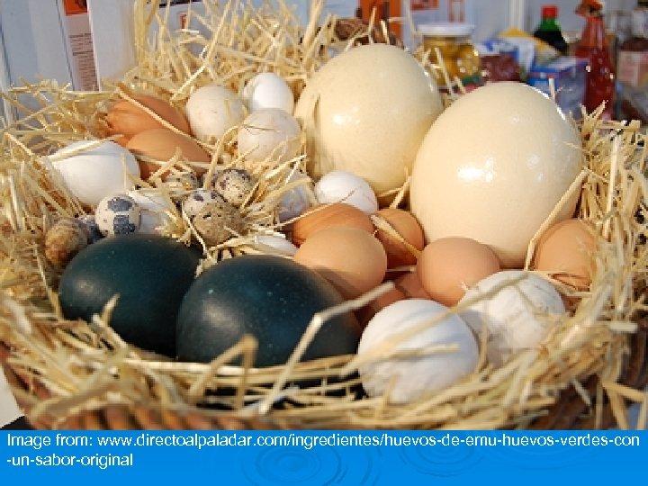 Image from: www. directoalpaladar. com/ingredientes/huevos-de-emu-huevos-verdes-con -un-sabor-original
