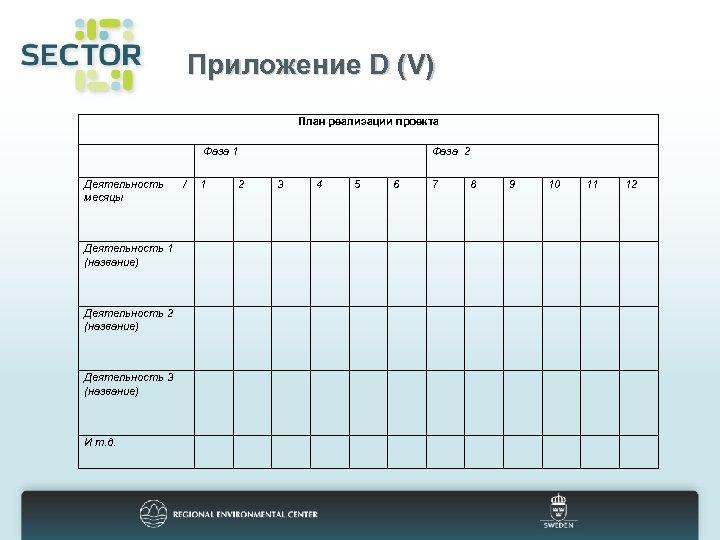 Приложение D (V) План реализации проекта Фаза 1 Деятельность месяцы Деятельность 1 (название) Деятельность