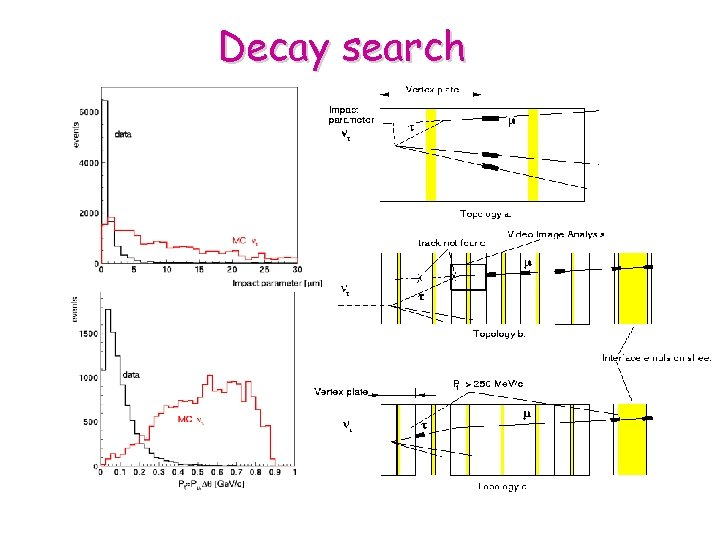 Decay search