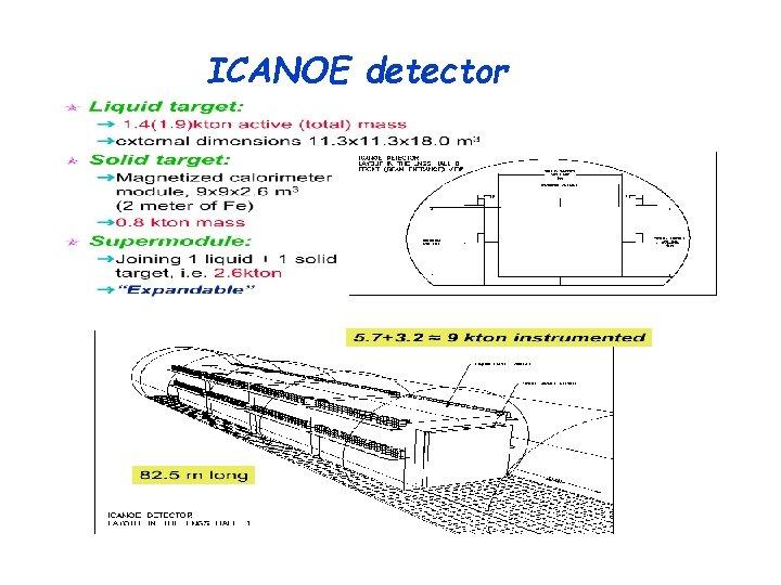 ICANOE detector