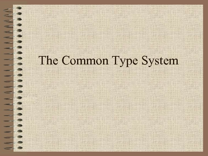 The Common Type System