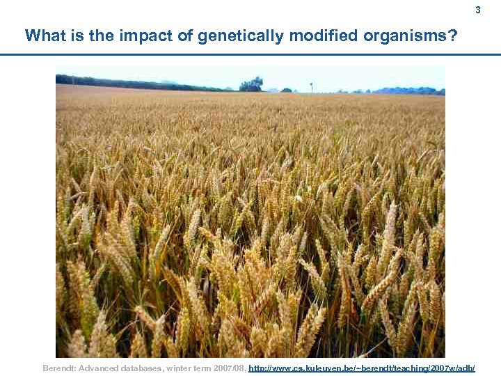 3 What is the impact of genetically modified organisms? Berendt: Advanced databases, winter term