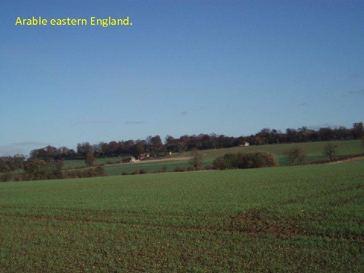 Arable eastern England.
