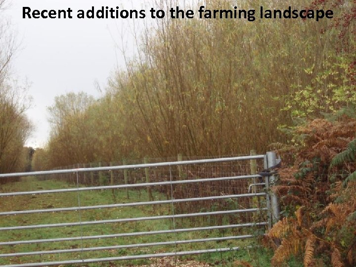 Recent additions to the farming landscape