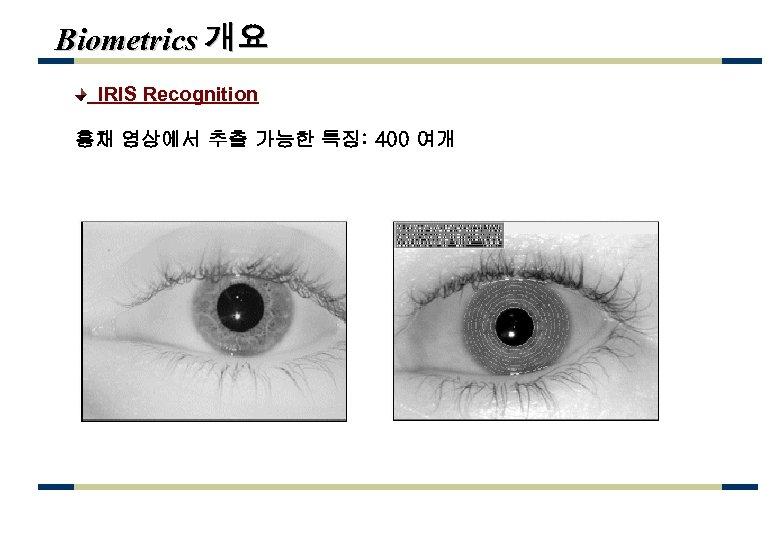 Biometrics 개요 IRIS Recognition 홍채 영상에서 추출 가능한 특징: 400 여개