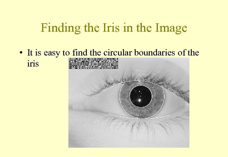 Finding the Iris in the Image • It is easy to find the circular