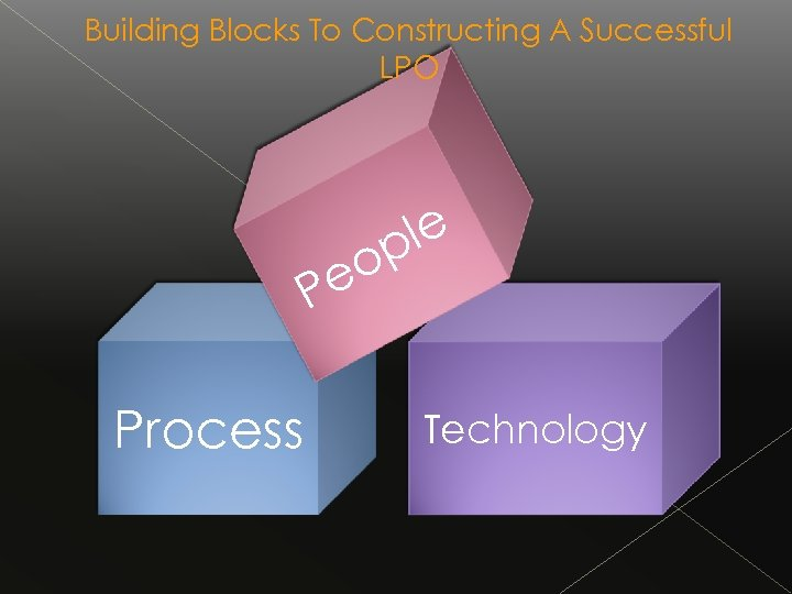 Building Blocks To Constructing A Successful LPO le p o e P Process Technology