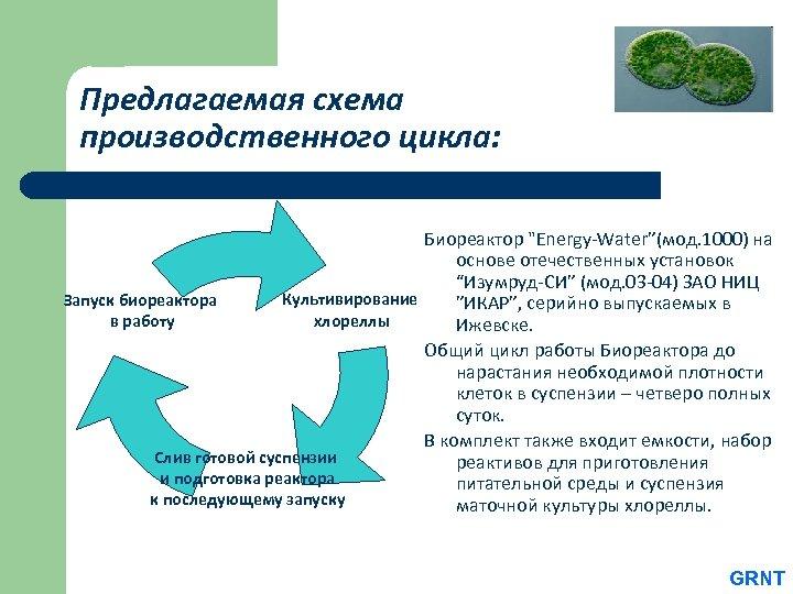 Предлагаемая схема производственного цикла: Биореактор