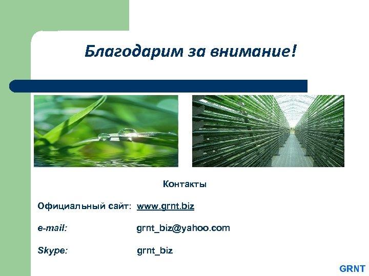 Благодарим за внимание! Контакты Официальный сайт: www. grnt. biz e-mail: grnt_biz@yahoo. com Skype: grnt_biz