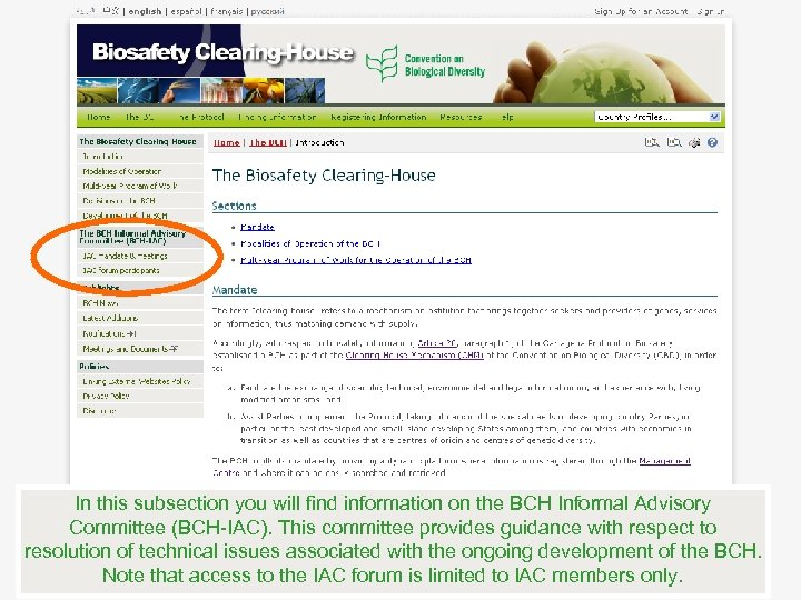 In this subsection you will find information on the BCH Informal Advisory Committee (BCH-IAC).
