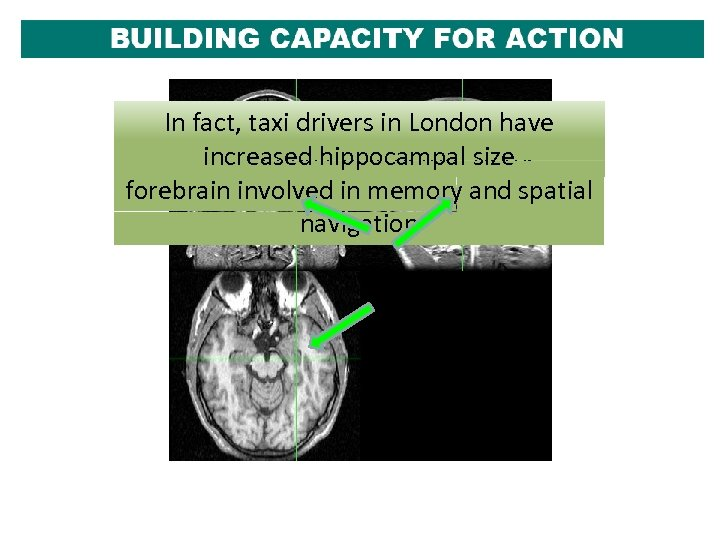 As In fact, taxi drivers example ofhave we know, adolescents are vulnerable Let, us