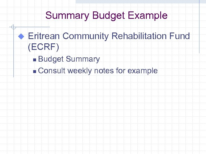 Summary Budget Example u Eritrean Community Rehabilitation Fund (ECRF) Budget Summary n Consult weekly