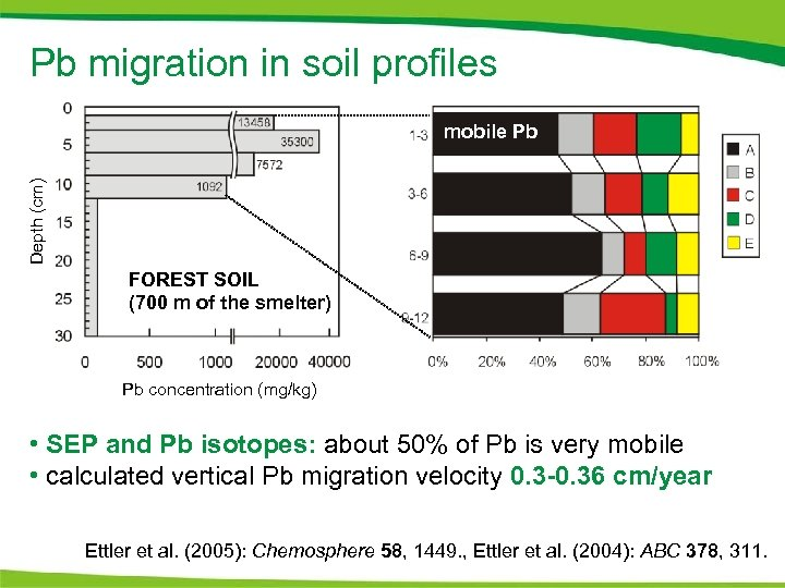 Pb migration in soil profiles Depth (cm) mobile Pb FOREST SOIL (700 m of