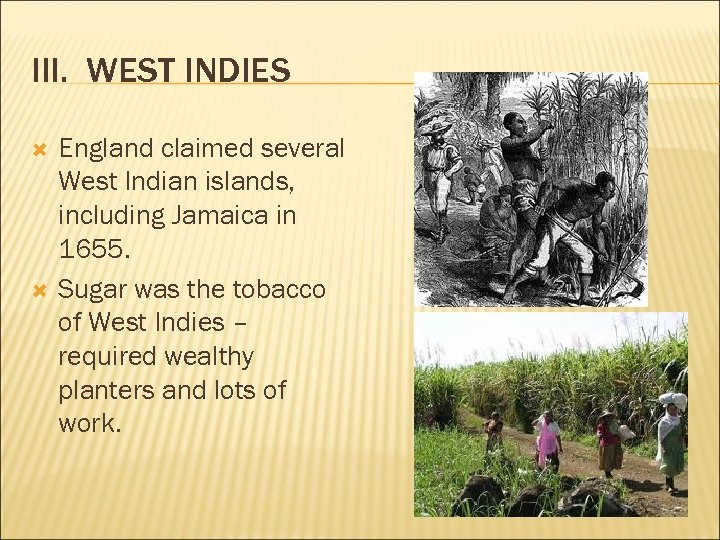 III. WEST INDIES England claimed several West Indian islands, including Jamaica in 1655. Sugar