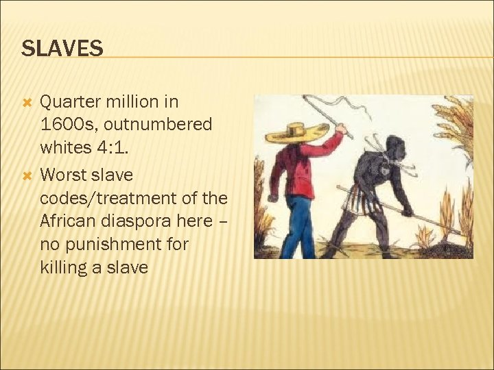 SLAVES Quarter million in 1600 s, outnumbered whites 4: 1. Worst slave codes/treatment of
