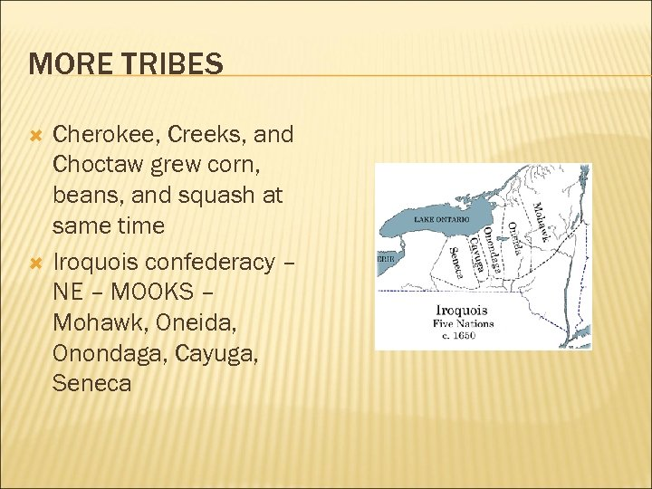 MORE TRIBES Cherokee, Creeks, and Choctaw grew corn, beans, and squash at same time