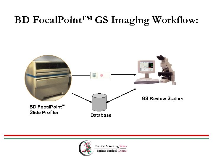 BD Focal. Point™ GS Imaging Workflow: GS Review Station BD Focal. Point™ Slide Profiler