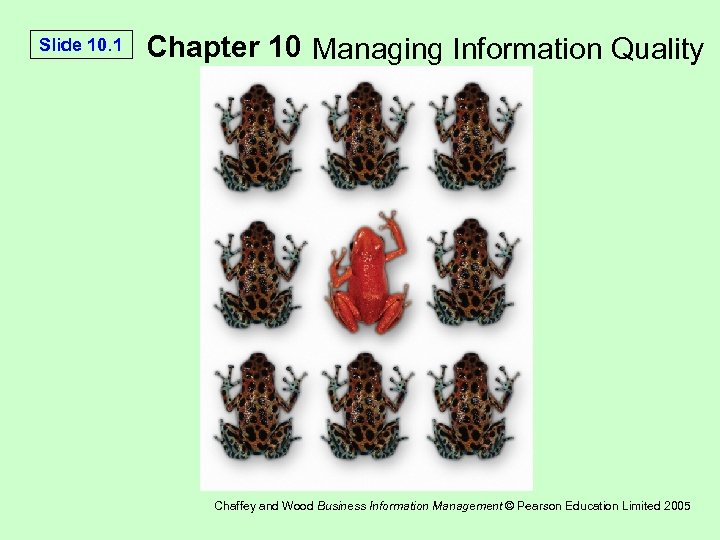 Slide 10. 1 Chapter 10 Managing Information Quality Chaffey and Wood Business Information Management