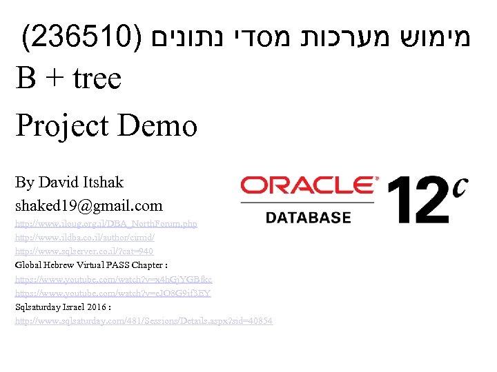 (236510) מימוש מערכות מסדי נתונים B + tree Project Demo By David Itshaked 19@gmail.