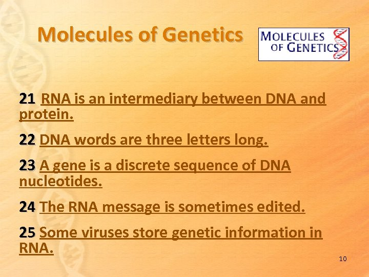 Molecules of Genetics 21 RNA is an intermediary between DNA and protein. 22 DNA