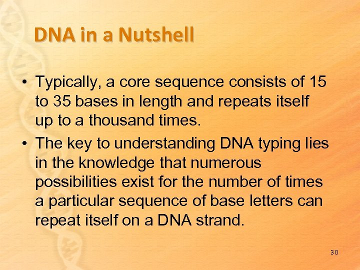DNA in a Nutshell • Typically, a core sequence consists of 15 to 35