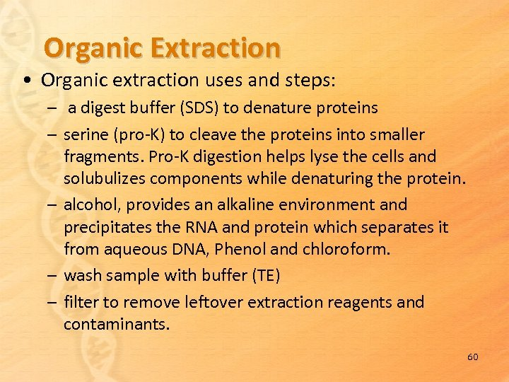 Organic Extraction • Organic extraction uses and steps: – a digest buffer (SDS) to