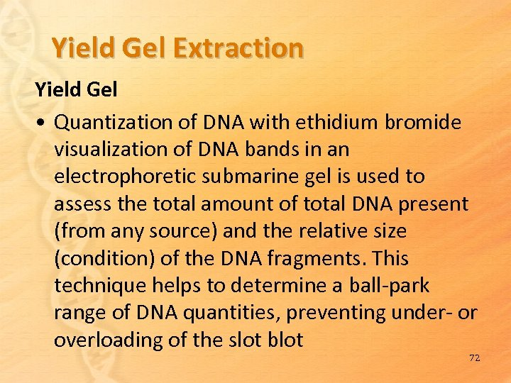 Yield Gel Extraction Yield Gel • Quantization of DNA with ethidium bromide visualization of