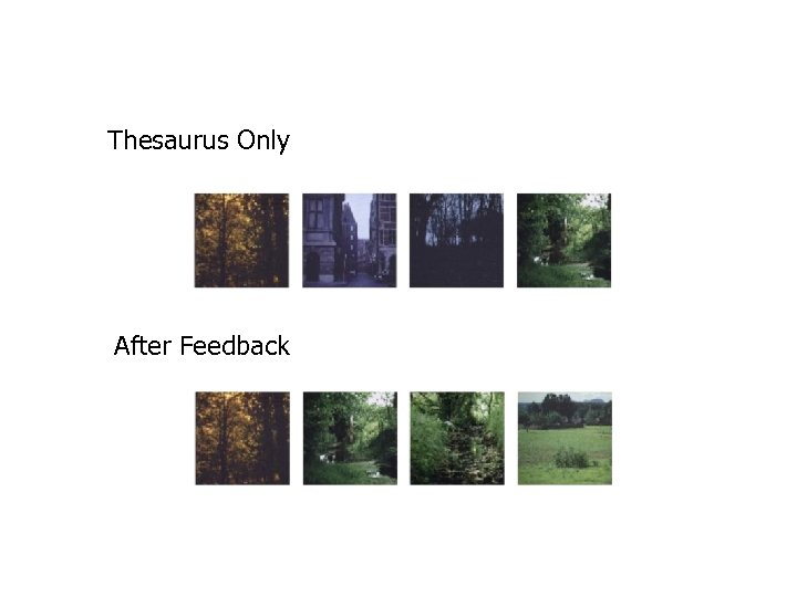 Thesaurus Only After Feedback